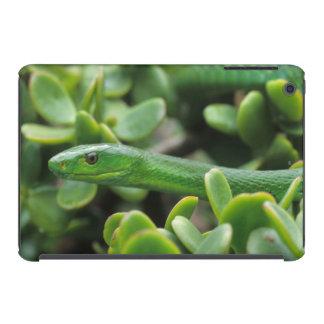 Eastern Green Mamba (Dendroaspis Angusticeps) iPad Mini Case
