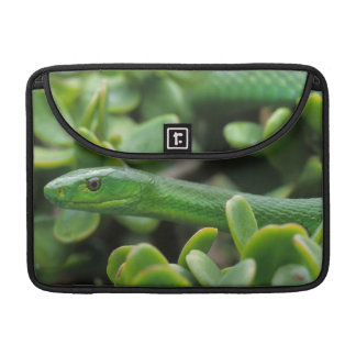 Eastern Green Mamba (Dendroaspis Angusticeps) MacBook Pro Sleeves