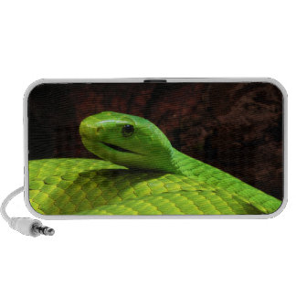 Eastern Green Mamba Dendroaspis Angusticeps Notebook Speakers