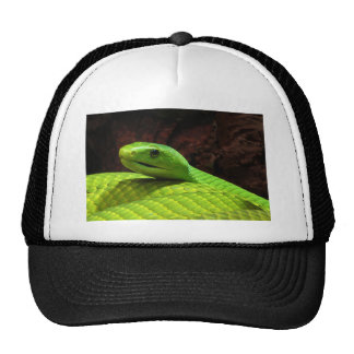 Eastern Green Mamba Dendroaspis Angusticeps Trucker Hat