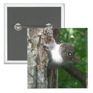Eastern Grey Squirrel (Sciurus carolinensis) Items 2 Inch Square Button