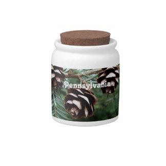Eastern Hemlock Candy Jars