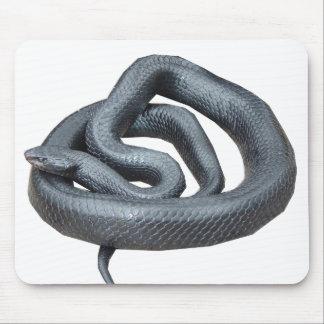 Eastern Indigo Snake Mouse Pad