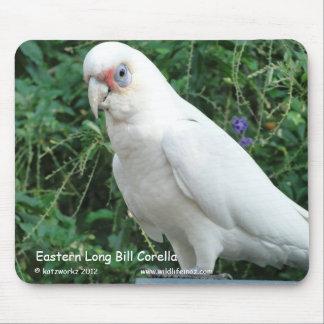 Eastern Long Bill Corella Mouse Pad