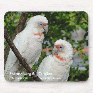 Eastern Long Bill Corellas Mouse Pad