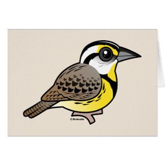 Eastern Meadowlark Cards