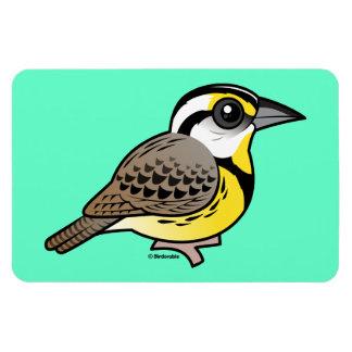 Eastern Meadowlark Magnet