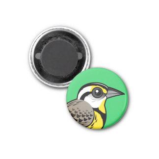 Eastern Meadowlark 1 Inch Round Magnet