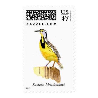 Eastern Meadowlark postage