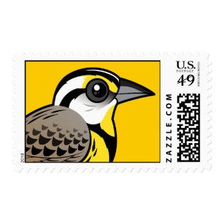 Eastern Meadowlark Stamps