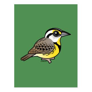 Eastern Meadowlark Postcard