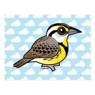 Eastern Meadowlark Post Card
