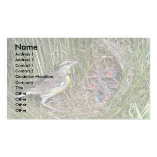 Eastern Meadowlark with young Business Card