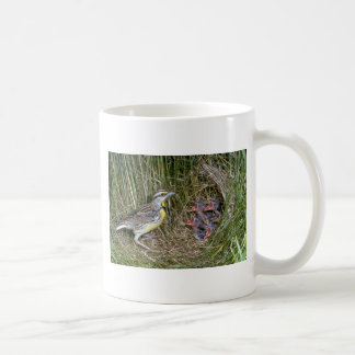 Eastern Meadowlark with young Mugs