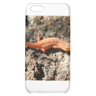 Eastern Newt iPhone 5C Covers