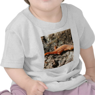 Eastern Newt Shirts