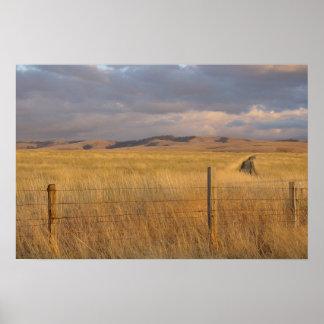 Eastern Oregon at Dusk Posters