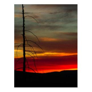 Eastern Oregon Sunrise Postcard