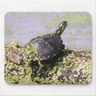 Eastern Painted Turtle Mouse Pad
