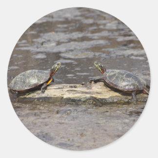 Eastern Painted Turtle Round Sticker