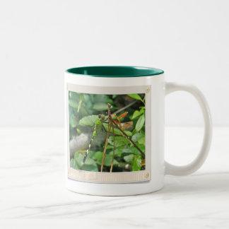 Eastern Pondhawk Dragonfly Coordinated Items Two-Tone Coffee Mug