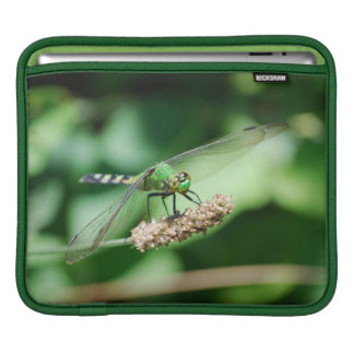 Eastern Pondhawk Dragonfly sleeve Sleeve For iPads