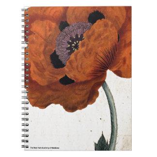 Eastern Poppy Notebook