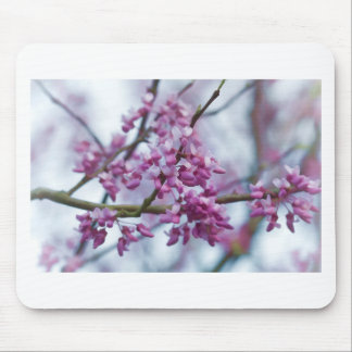 Eastern Redbud Wildflowers - Cercis canadensis Mouse Pad