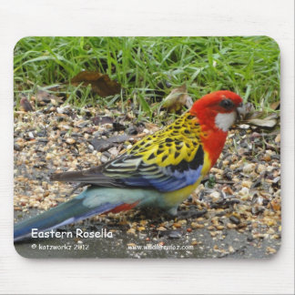 Eastern Rosella Mouse Pad