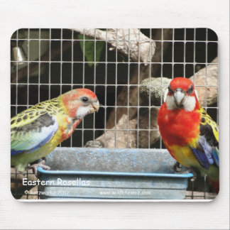 Eastern Rosellas Mouse Pads