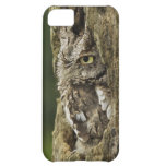 Eastern Screech Owl Gray Phase) Otus asio, Case For iPhone 5C