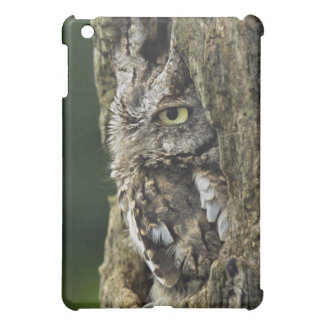 Eastern Screech Owl (Gray Phase) Otus asio Case For The iPad Mini