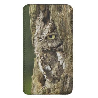 Eastern Screech Owl Gray Phase) Otus asio, Galaxy S5 Pouch