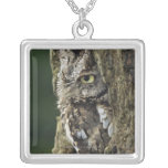 Eastern Screech Owl (Gray Phase) Otus asio Silver Plated Necklace