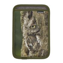 Eastern Screech Owl Gray Phase) Otus asio, Sleeve For iPad Mini