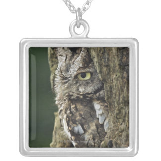Eastern Screech Owl (Gray Phase) Otus asio Square Pendant Necklace