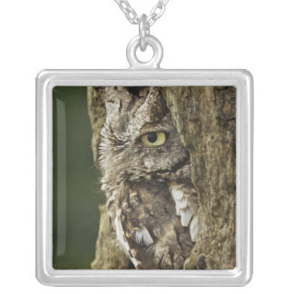 Eastern Screech Owl Gray Phase) Otus asio, Square Pendant Necklace