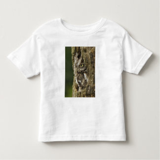 Eastern Screech Owl Gray Phase) Otus asio, Toddler T-shirt