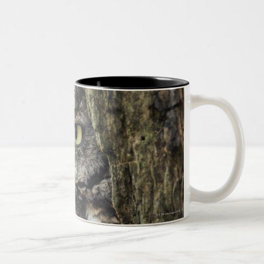 Eastern Screech Owl (Gray Phase) Otus asio Two-Tone Coffee Mug