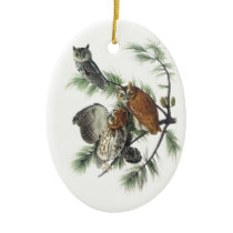 Eastern Screech Owl, John Audubon Ceramic Ornament