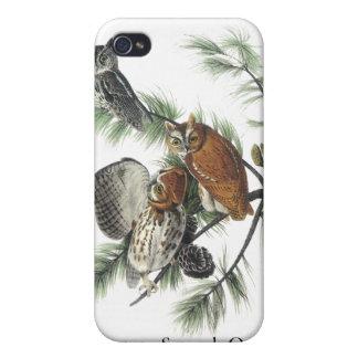 Eastern Screech Owl, John Audubon Case For iPhone 4