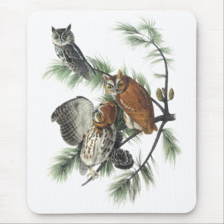 Eastern Screech Owl, John Audubon Mouse Pad