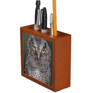 Eastern Screech-Owl, Megascops asio, Otus 2 Desk Organizer