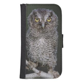 Eastern Screech-Owl, Megascops asio, Otus 2 Galaxy S4 Wallet Case