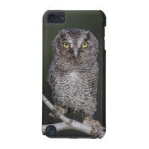 Eastern Screech-Owl, Megascops asio, Otus 2 iPod Touch (5th Generation) Case