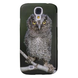 Eastern Screech-Owl, Megascops asio, Otus 2 Samsung S4 Case