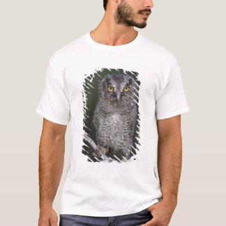 Eastern Screech-Owl, Megascops asio, Otus 2 T-Shirt