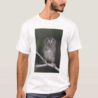 Eastern Screech-Owl, Megascops asio, Otus 2 T-Shirt