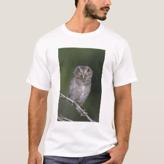 Eastern Screech-Owl, Megascops asio, Otus T-Shirt