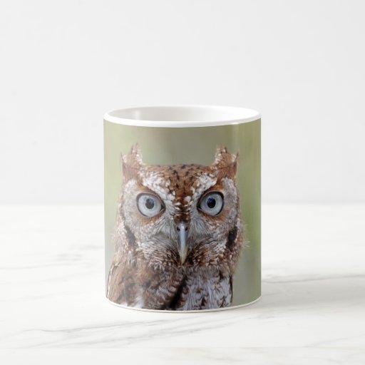 Eastern Screech Owl Photograph Classic White Coffee Mug